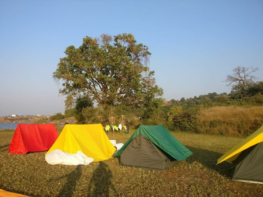 Our tents with proper beddings