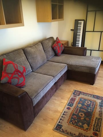 Living area with pull out double bed