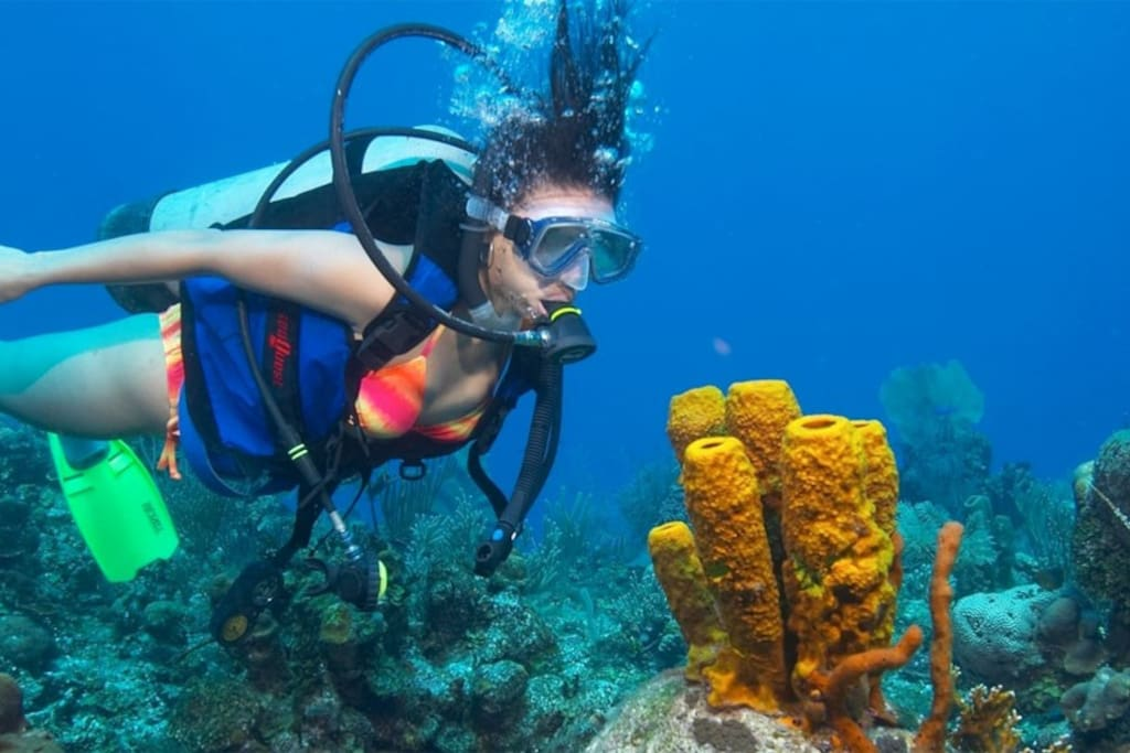 SCUBA  diving in Weligama