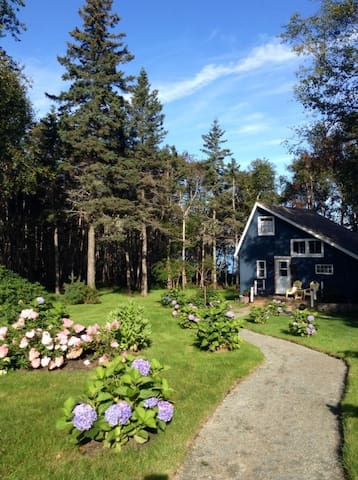 Idyllic seaside setting for your stay in our cozy cabin.