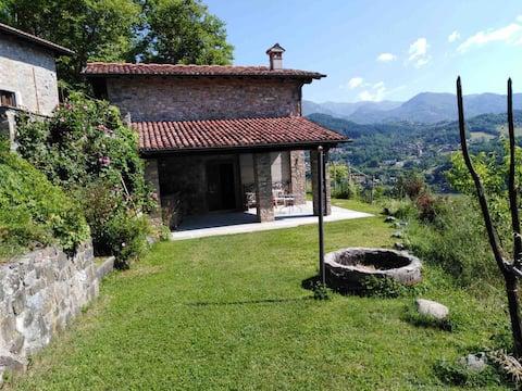 Birillina House
