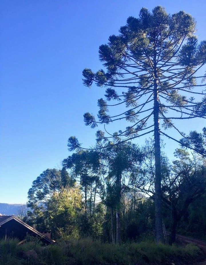 Cabana, um encontro com a natureza