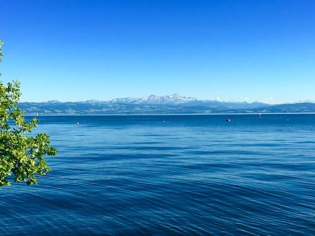 Guidebook Friedrichshafen