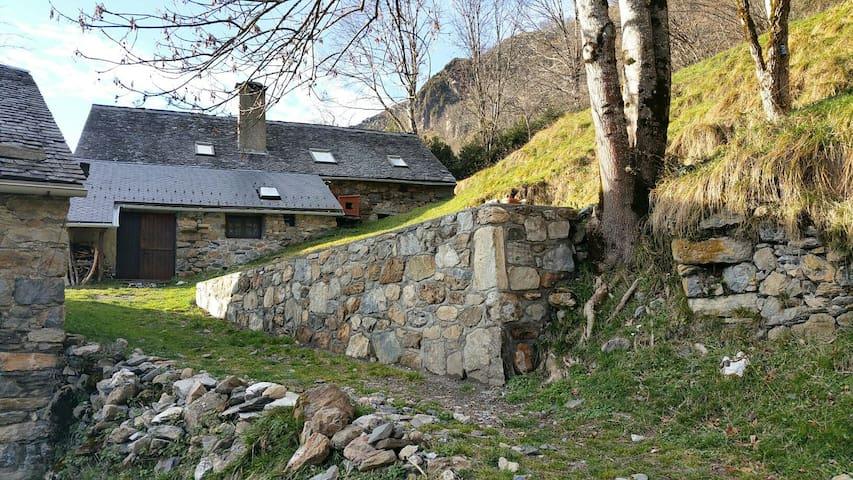 Ferme atypique en pleine montagne - Louvie-Soubiron - Dům