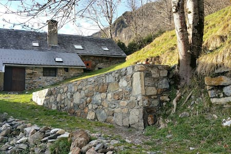 Ferme atypique en pleine montagne - Louvie-Soubiron