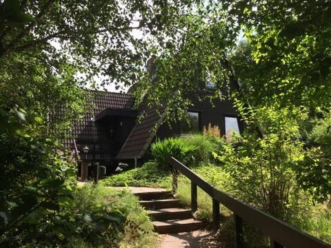 Ferienhaus Riesewohld  - Nurdach-Holzhaus am Wald