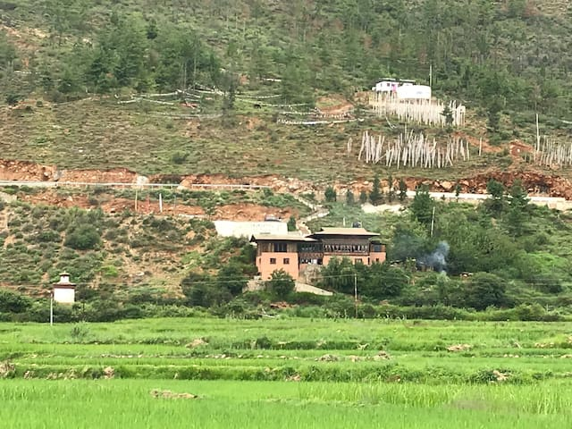 A home which give you a nature feelings