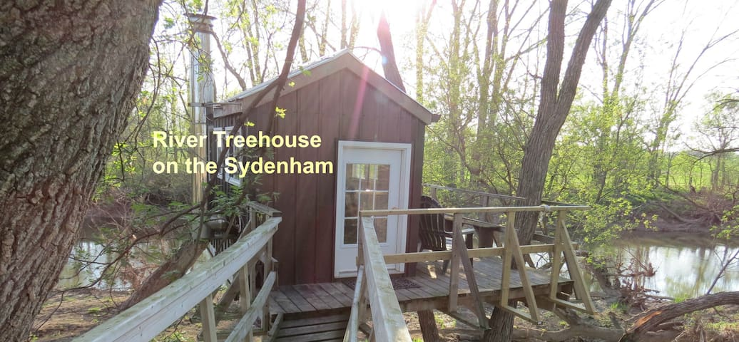 River Treehouse on the Sydenham - Florence - Cabana en un arbre