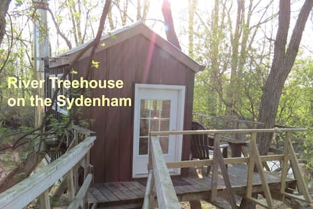 River Treehouse on the Sydenham - Florence - Lombház
