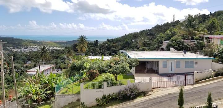 Serenity in Ceiba