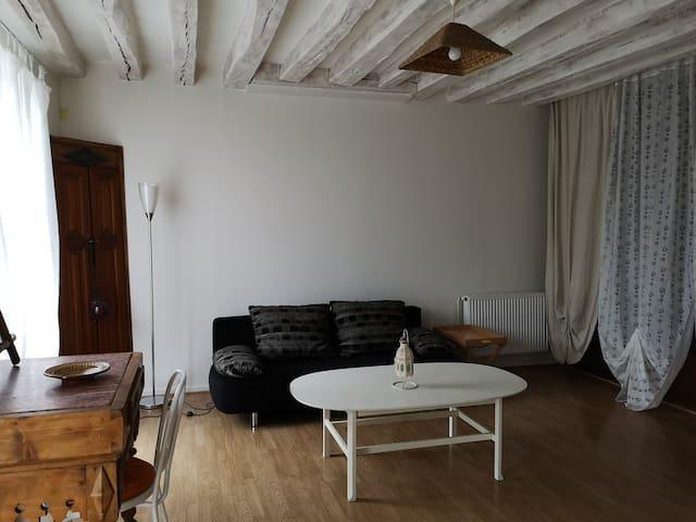 Salon avec canapé 2 places et coin repas