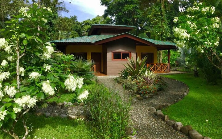 Splendour Apartment in Oasi next Cahuita Park