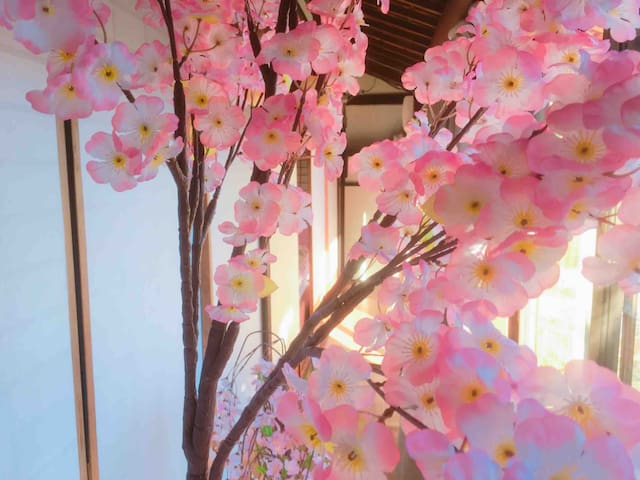 ☆ Promotional Price! Sakura Decoration  House