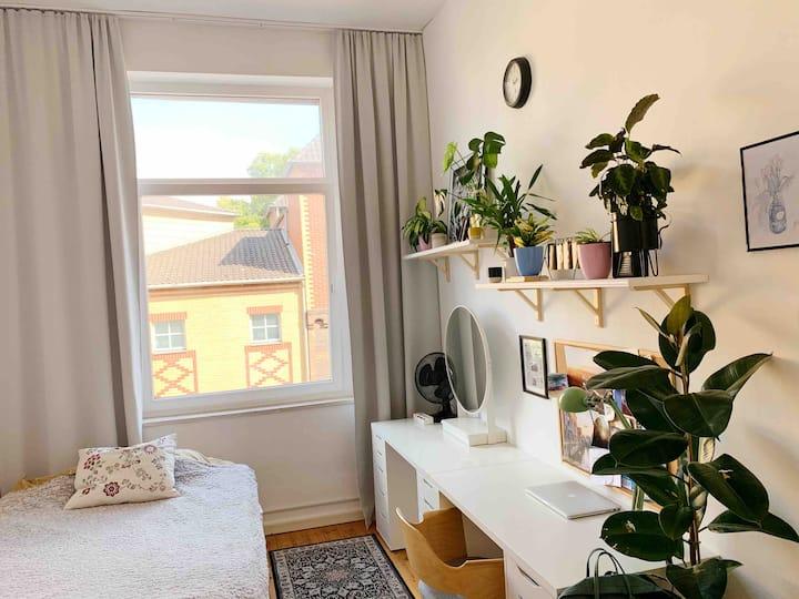 Zentrales Altbau-Appartement in Dom Nähe