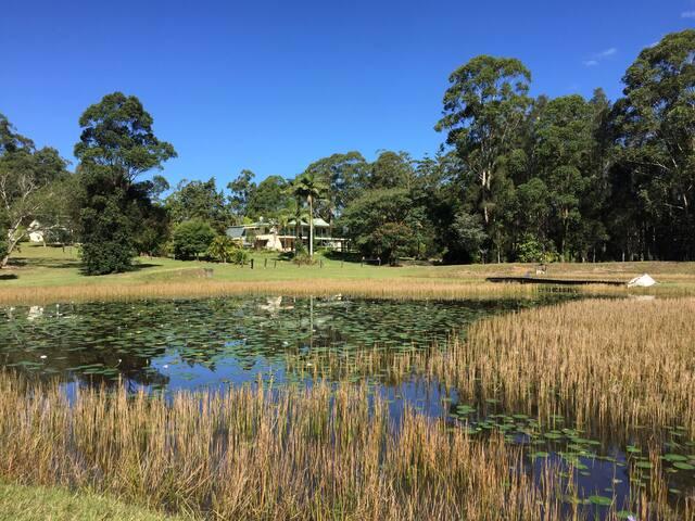 Lake Innes Retreat - Lake Innes - House