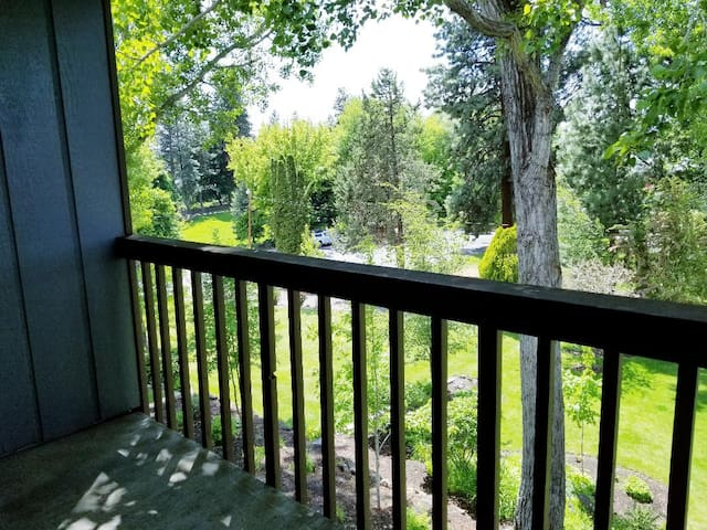 One of Two Private Balconies over looking Pioneer Park off of the living space.