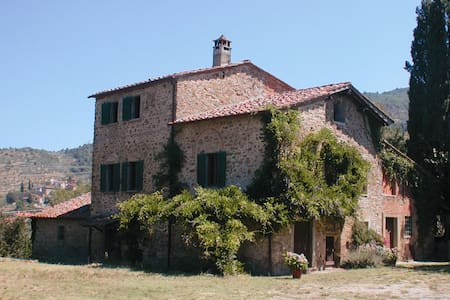 Olivo, sleeps 6 guests in Arezzo - Arezzo
