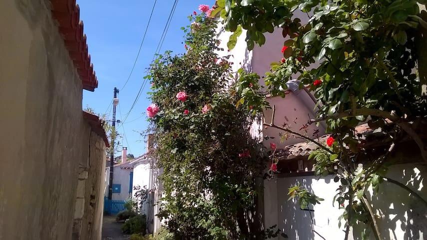 Maison de pays avec jardin clos centre village