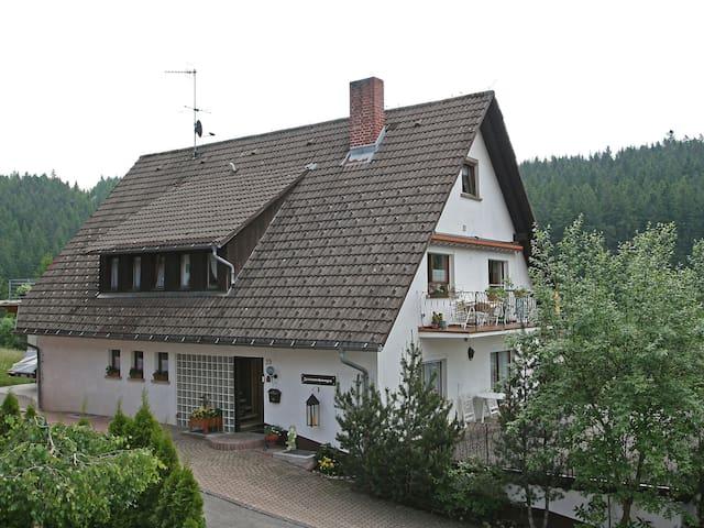 Great Apartment Scherzinger 5466.2 - Eisenbach (Hochschwarzwald) - Lägenhet