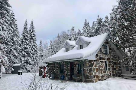 Chalet et cabane dans le bois