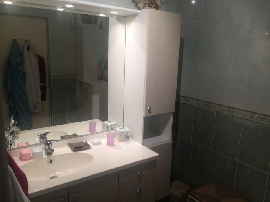 salle de bain pour les voyageurs
