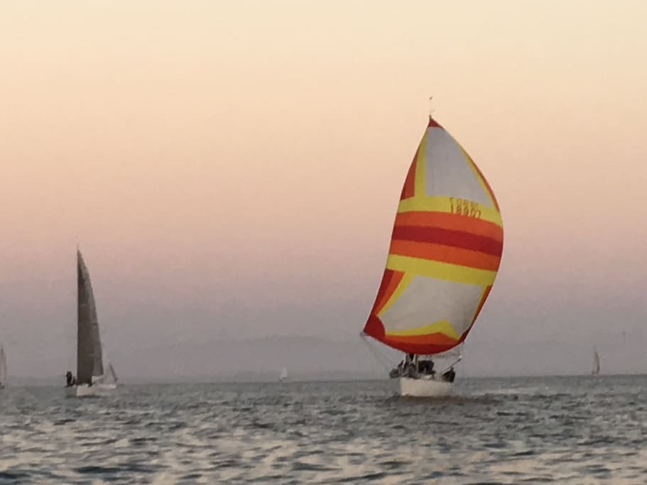 Wednesday night racing. We have a sail boat if you want to join us..