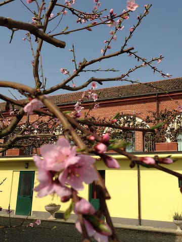 Easter on the banks of the Po ... in Monferrato
