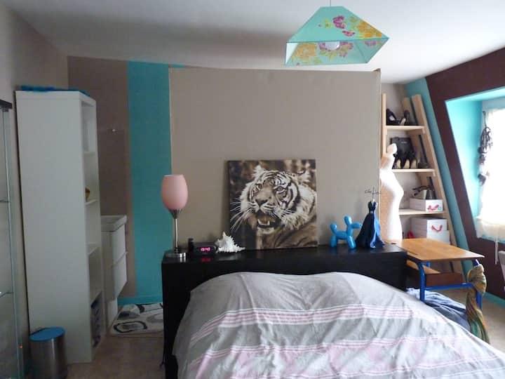 Chambre spacieuse dans maison particulière