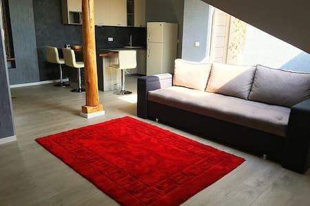 Атмосферная квартира-студия в Самом Центре!