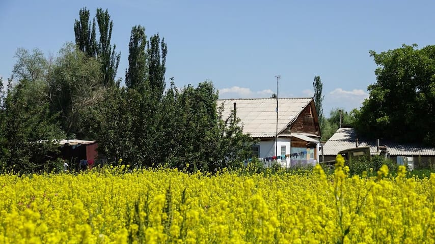 Homestay close to Karakol and Issy Kul
