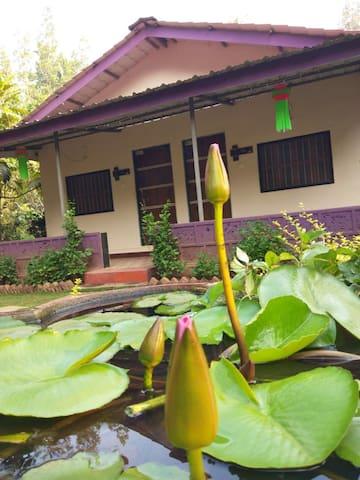 Gratitude Stays - Garden Resort
