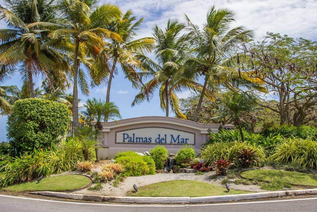 Inside renowned Palmas Del Mar