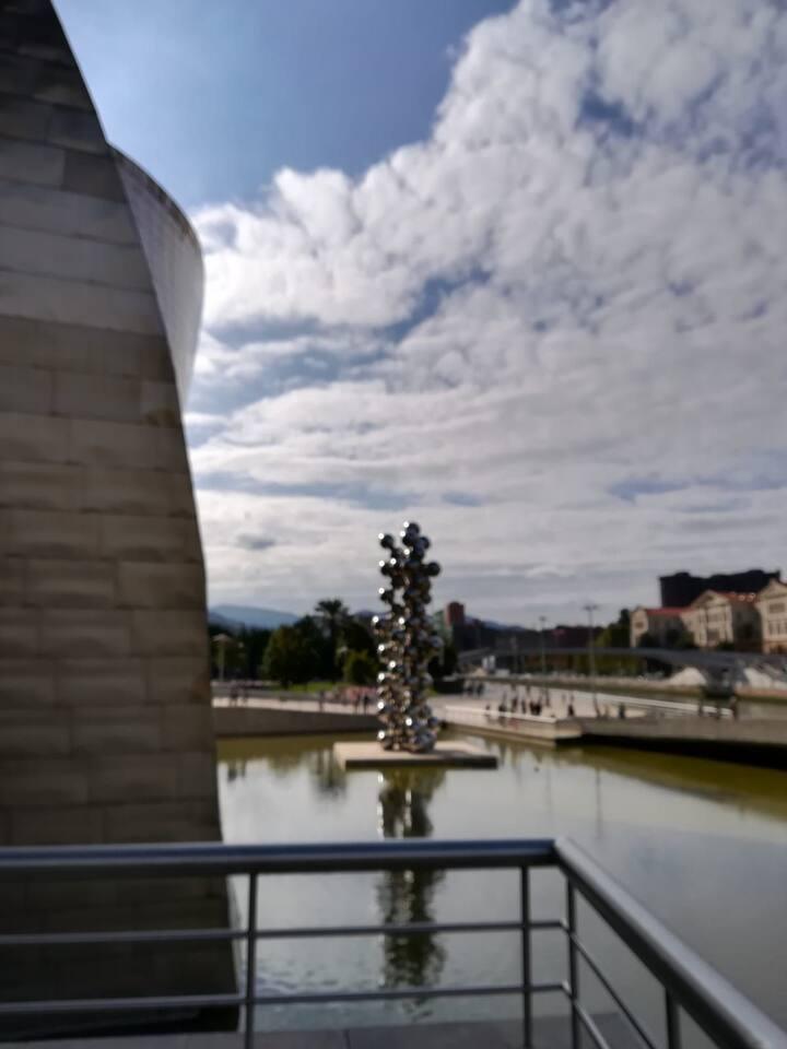Habitación a 3 minut.del Guggenheim cerca de todo.