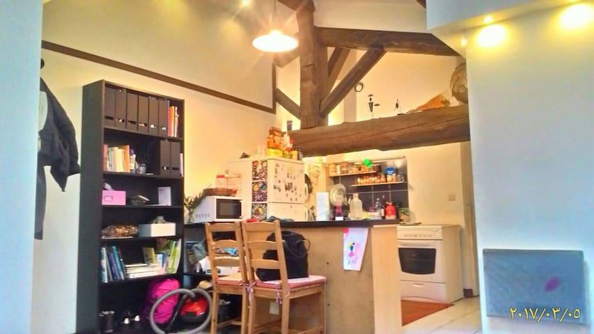 studio sympa au coeur de Lyon - Lyon - Appartement