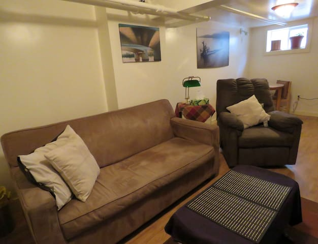 Cozy private basement suite on the Red River - Winnipeg - Appartement