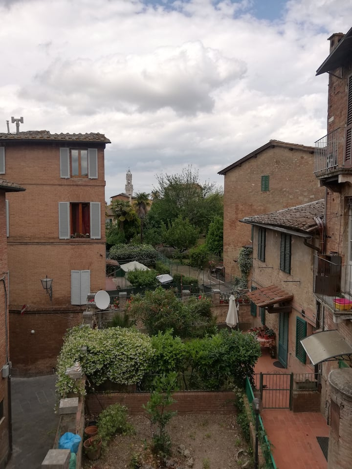 A small apartment in the heart of siena