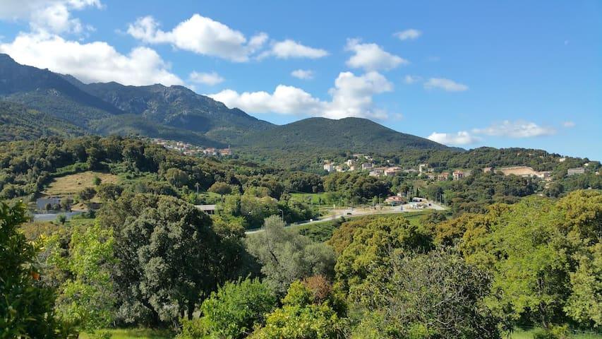 Appartement- Rez de chaussée- Maison Corse typique