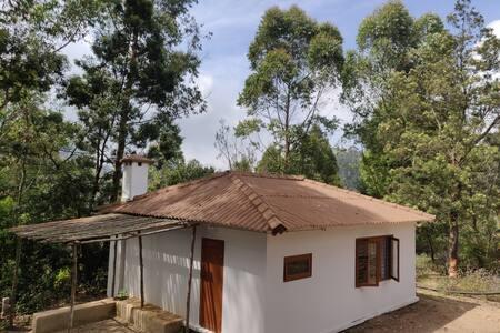 Nilgiri Hill kookal cottage 3