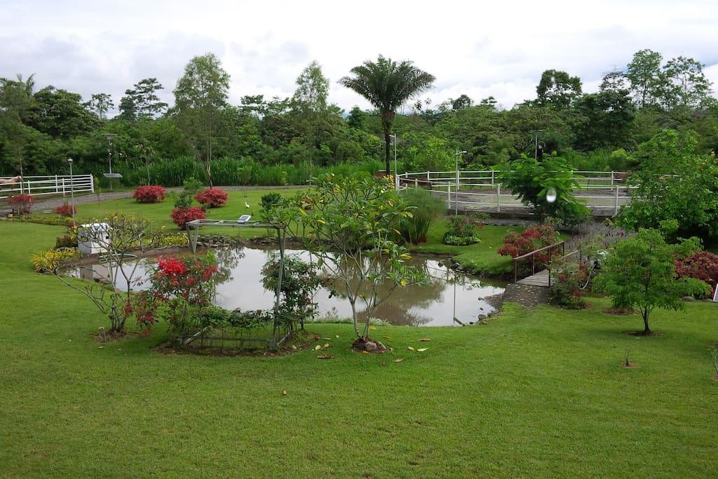Laguna natural