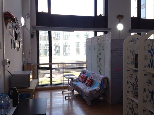 上海迪斯尼的海景阳光房创业公寓HACKER home disney 1 - Shanghai - Huoneisto