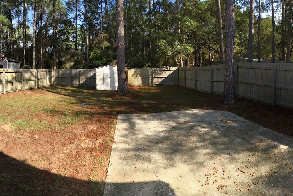 Spacious fenced in back yard for dogs and kids to play