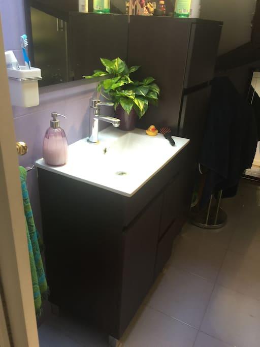 Baño abohardillado( techos bajos)
