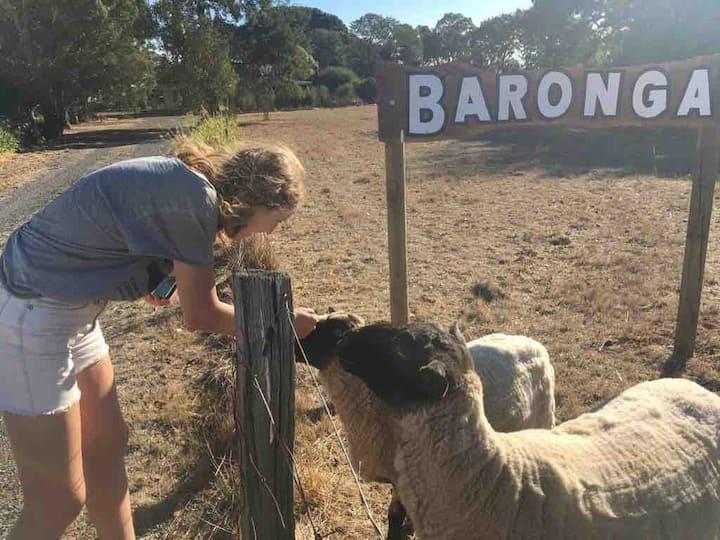 Baronga Farm House