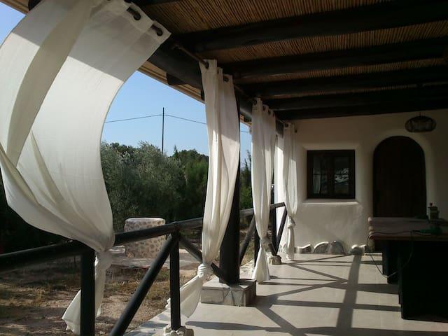 CASA DE PAJA EN EL CAMPO - Aspe - บ้าน
