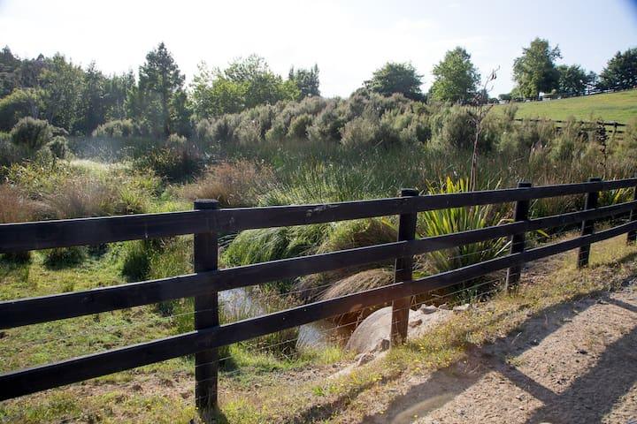 Perfect wetland