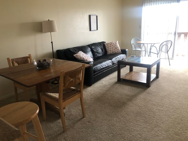 Overland Park, Kansas  1 bedroom apartment