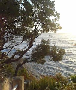 propriété avec accès  à  la crique - Sari-Solenzara