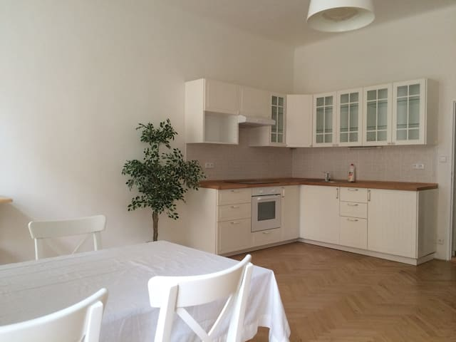 Spacious room in the Prague centre - Prag - Daire