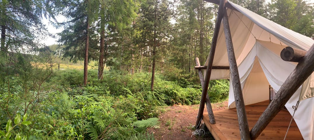 Lakefront Glamping Tent on the Comox Valley