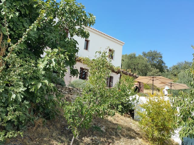 Beautiful Cortijo with pool & wifi - MONTEFRIO - Montefrío